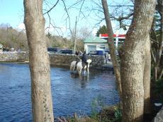 Ireland 2010 171