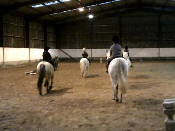 horseriding-lessons-mayo-galway