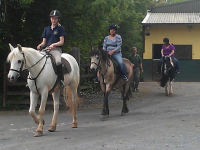 Private Horse Riding